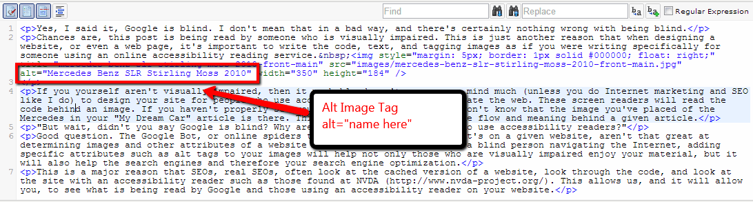 Alt Image Tag Example